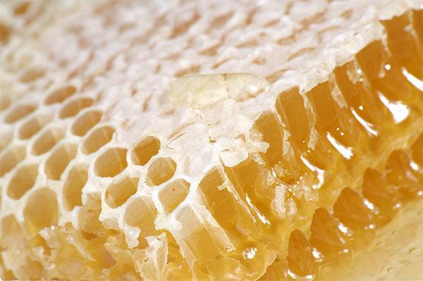 土のハチミツ
